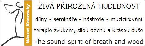 Petr Broniš